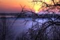 Картинка зима, пейзаж, закат, дерево