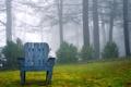 Картинка природа, фон, кресло