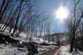 Картинка небо, солнце, дорога, деревья, блик, зима, склон