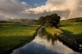 Картинка зелень, лето, небо, трава, облака, деревья, пейзаж
