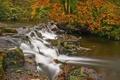 Картинка осень, лес, река