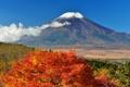 Картинка осень, небо, листья, деревья, Япония, гора Фудзияма