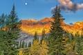 Картинка пейзаж, горы, деревья