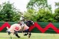 Картинка лошадь, доспехи, воин, рыцарь, турнир