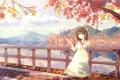Картинка парк, река, листва, аниме, девочка, городок, щсень
