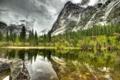 Картинка лес, озеро, серый, гора, день