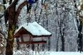 Картинка осень, снег, деревья, парк, кормушка, поздняя