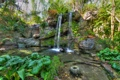 Картинка лес, ручей, деревья, водопад, поток, камни