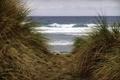 Картинка море, природа, дюны