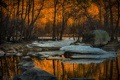Картинка лед, лес, река, камни, весна, валуны, март