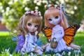 Картинка девочки, куклы, крылья, фея, венок