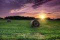 Картинка поле, трава, солнце, закат, сено
