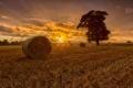 Картинка закат, поле, сено