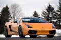 Картинка оранжевый, ели, суперкар, supercar, вид спереди, orange, ламборгини