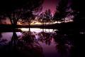 Картинка закат, силуэты, деревья, вечер, отражение, вода, озеро