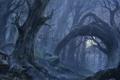 Картинка лес, природа, мистика