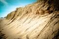 Картинка песок, море, трава, вода, природа, корни, люди