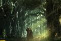 Картинка лес, знак, собака, радиация, сталкер, survarium