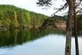 Картинка вода, деревья, природа, озеро, фото, Россия, Карельский Перешеек