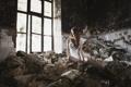 Картинка девушка, окно, заброшенное здание