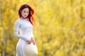 Картинка девушка, фон, азиатка