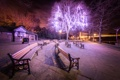 Картинка деревья, ночь, город, огни, парк, улица, Англия