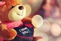 Картинка настроения, сердце, мишка, love, я тебя люблю, i love you