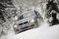 Картинка снег, палки, BMW, ёлки, Touring, 320d