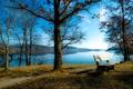 Картинка берега, река, деревья, лавочка, осень, тропинка