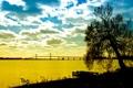 Картинка море, осень, небо, листья, облака, деревья, пейзаж