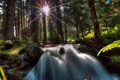 Картинка лес, деревья, камни, водопад, лучи солнца