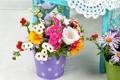 Картинка фото, Цветы, Ромашки, Колокольчики, Гвоздики