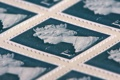 Картинка макро, фон, марки