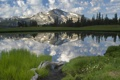 Картинка лес, трава, коряга, горы, вода, озеро