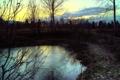 Картинка холод, лед, зима, вода, деревья, вечер, сумерки