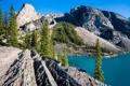 Картинка Канада, небо, Альберта, озеро, долина десяти пиков, деревья, Moraine Lake