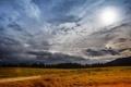 Картинка дорога, поле, лес, солнце, облака
