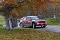 Картинка Красный, Осень, Mini Cooper, WRC, Rally, MINI, Dani Sordo