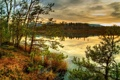Картинка облака, горизонт, HDR, лес, река Австрия, побережье, природа