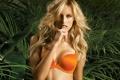 Картинка грудь, тропики, модель, блондинка, Karolina Kurkova