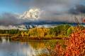 Картинка осень, трава, листья, снег, деревья, горы, тучи