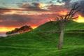 Картинка пейзаж, природа, green, HDR, colors, colorful, hdr