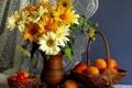 Картинка герберы, кувшин, корзина, нектарин, натюрморт, шишка, абрикос