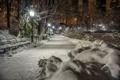 Картинка зима, снег, деревья, ночь, огни, парк, Нью-Йорк