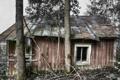 Картинка фон, дерево, дом, стиль