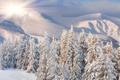 Картинка зима, лес, солнце, снег, рассвет, холмы, сопки