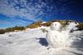 Картинка зима, снег, ветки, снеговик, солнечно