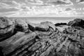 Картинка океан, скалы, побережье, черно-белое