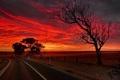 Картинка дорога, ночь, Australia, South Australia, Strathalbyn