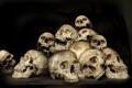 Картинка skull, yellow, humans, many bones